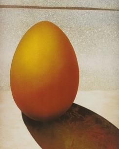 卵(オレンジ色) フォトイラストのイラスト素材 [FYI03206080]