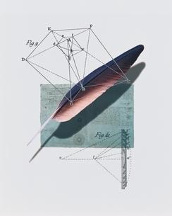 羽根と図式の写真素材 [FYI03206093]
