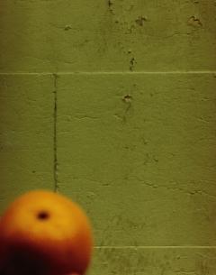 壁とオレンジの写真素材 [FYI03206502]