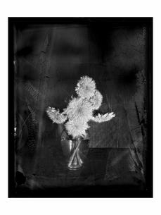 花瓶に挿したヒマワリの花 B/Wの写真素材 [FYI03206539]