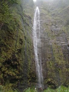ワイモクの滝の写真素材 [FYI03207038]