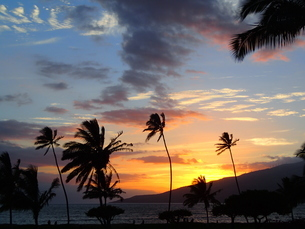 マウイの夕焼け空の写真素材 [FYI03207075]