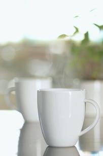 湯気が上がるマグカップの写真素材 [FYI03207140]