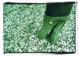 桜の花びらの上に立つ外国人女性の後姿の写真素材 [FYI03207227]
