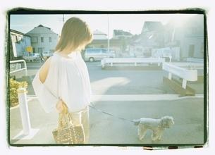 プードルを散歩させる日本人女性の写真素材 [FYI03207237]