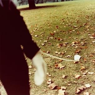 落ち葉の草原を歩く手袋をした日本人女性の写真素材 [FYI03207260]