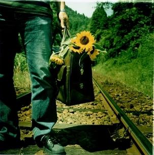 線路に立つ日本人中高年男性と複数のヒマワリの写真素材 [FYI03207264]