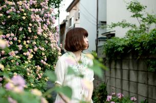 黄色とピンクの花が咲く生垣のある路地裏にいる20代女性の写真素材 [FYI03207538]