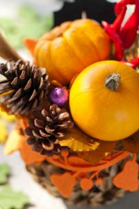 秋の実りのアレンジメントの写真素材 [FYI03207625]