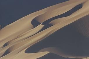 ナミビアの砂丘 夏の写真素材 [FYI03207648]