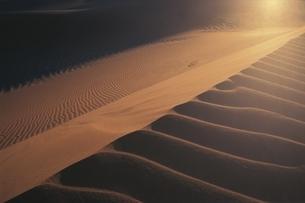 砂の模様が描かれたナミブ砂漠 ナミビアの写真素材 [FYI03207750]