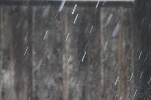 雨の写真素材 [FYI03207784]