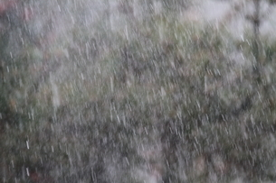 雨の写真素材 [FYI03207805]