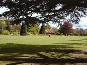 芝生の生えた公園の風景 チェスター イギリスの写真素材 [FYI03207973]