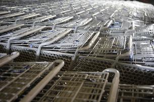 ショッピングをする20代女性の写真素材 [FYI03209802]