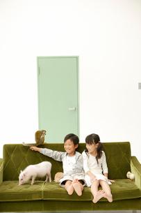動物と遊ぶ男の子と女の子の写真素材 [FYI03210216]