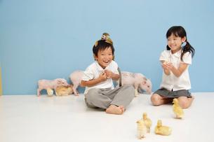 動物と遊ぶ男の子と女の子の写真素材 [FYI03210298]
