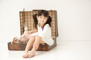 トランクに座る女の子とブタの写真素材 [FYI03210303]