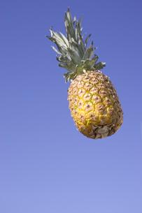 宙に浮いたパイナップルの写真素材 [FYI03212732]