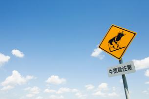 牛の標識と青空の写真素材 [FYI03213726]
