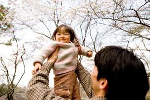桜が咲く公園で遊ぶ親子の写真素材 [FYI03214305]