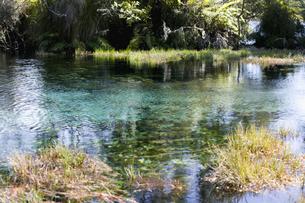 沼の風景の写真素材 [FYI03214361]