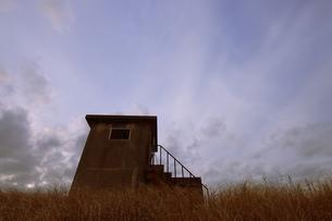 廃墟と枯れ草の風景の写真素材 [FYI03214368]