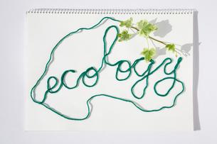 画用紙の上にECOLOGYと糸でかたどった文字の写真素材 [FYI03214373]