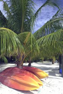 海岸に置かれたサーフボードの写真素材 [FYI03214861]