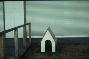 店先の犬小屋の写真素材 [FYI03215090]