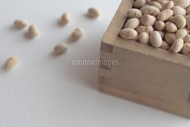 節分の豆の写真素材 [FYI03215133]