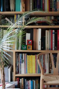 本棚とイス 観葉植物のヒメヤシの写真素材 [FYI03215212]