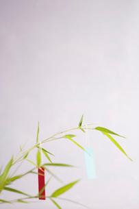 七夕飾りの写真素材 [FYI03215232]