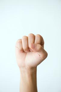 男性の拳の写真素材 [FYI03215379]