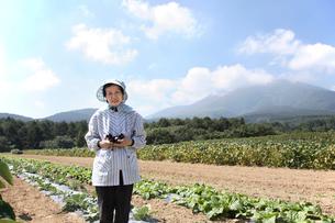高原の畑に立つ農家の女性の写真素材 [FYI03215712]