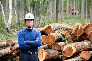 間伐材と男性の写真素材 [FYI03215764]