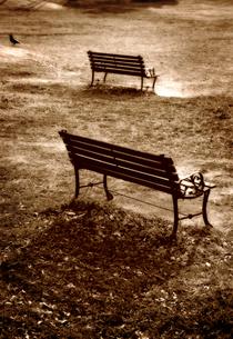晩秋の公園のベンチの写真素材 [FYI03215849]