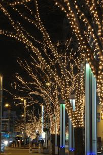 千葉中央公園のイルミネーションの写真素材 [FYI03216263]