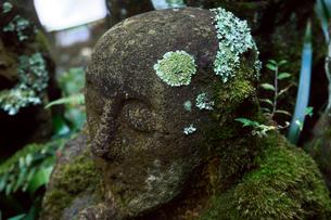 愛宕念仏寺の羅漢さんの写真素材 [FYI03216298]