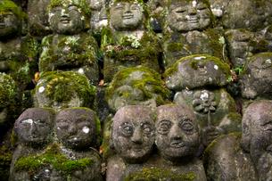愛宕念仏寺の羅漢さんの写真素材 [FYI03216303]