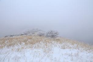 雪山の写真素材 [FYI03216509]