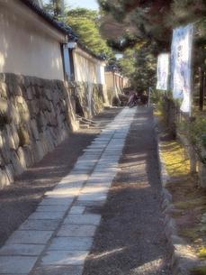 石垣と小道 建仁寺の写真素材 [FYI03216546]
