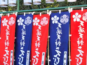 赤と青の幟の写真素材 [FYI03216591]