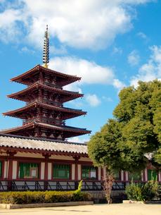 四天王寺の五重の塔の写真素材 [FYI03216651]
