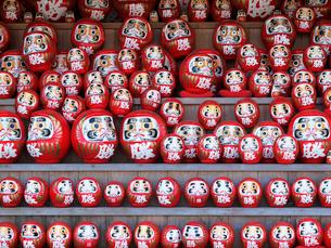 勝尾寺の勝ちダルマ奉納棚の写真素材 [FYI03216670]