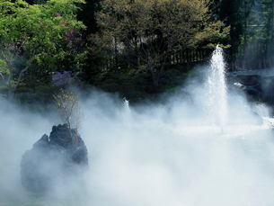 勝尾寺の写真素材 [FYI03216672]