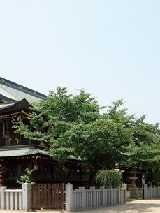 大阪天満宮の写真素材 [FYI03216674]