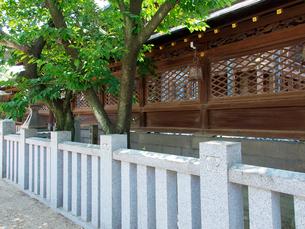 大阪天満宮の写真素材 [FYI03216701]