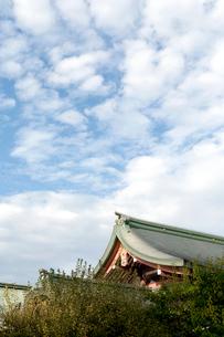 北野天満宮の宝物殿の写真素材 [FYI03216751]