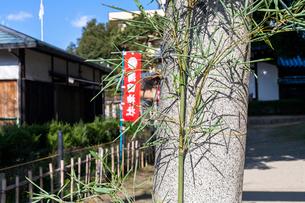 鳥居と笹の写真素材 [FYI03216796]